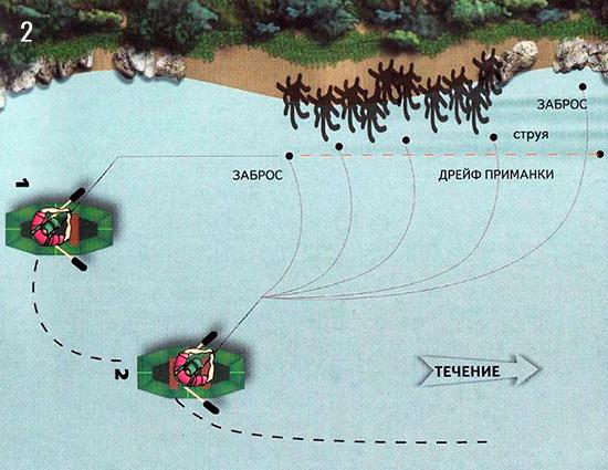 Схема ловли рыбы около затопленных кустов