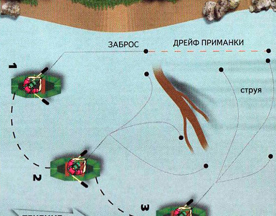 Схема ловли рыбы около подмытых корней деревьев
