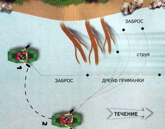 Схема ловли рыбы около речных завалов