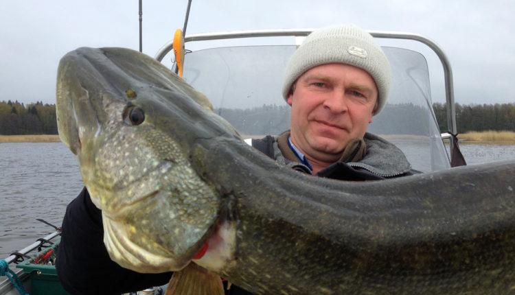 Практика рыбалки на щуку
