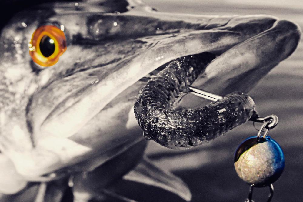 Как ловить щуку на джиг с берега: выбор приманки и джиг головки