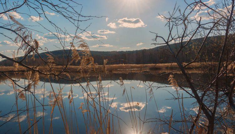 Ловля щуки весной в озере