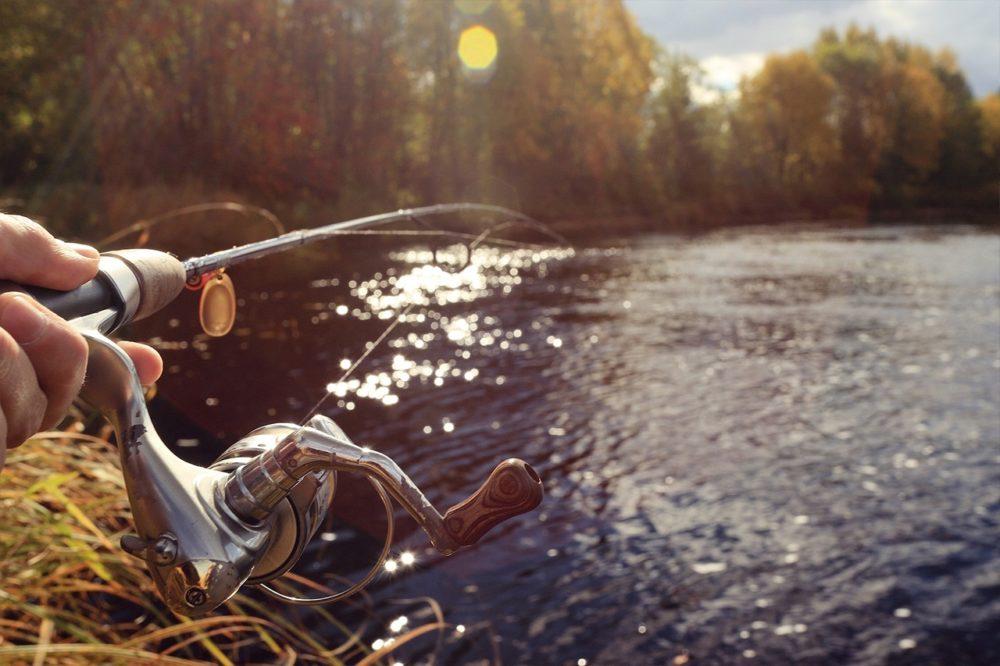Ловля щуки на спиннинг в сентябре