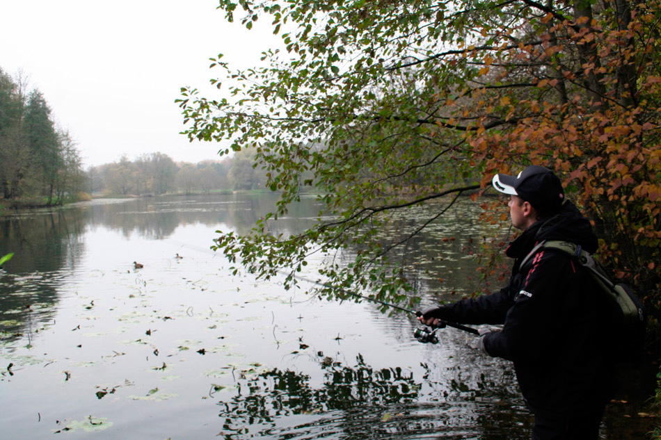 Ловля щуки осенью спиннингом с берега