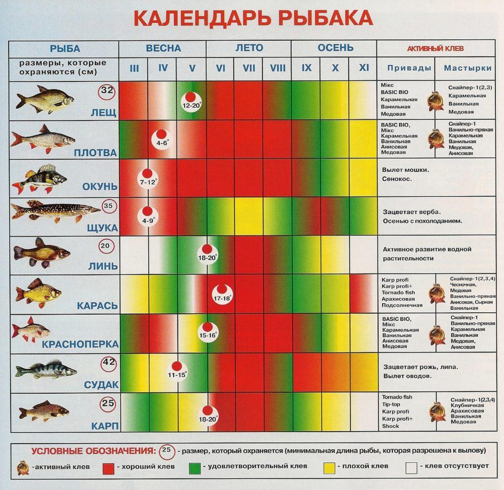 Дни благоприятны для клева рыбы