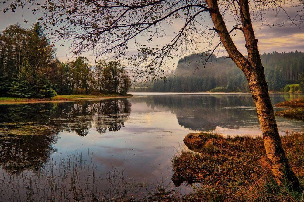 Октябрь на реке