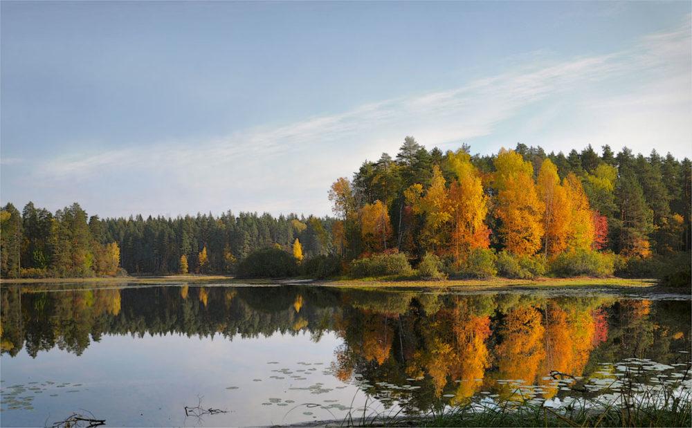 Осень на реке со спиннингом