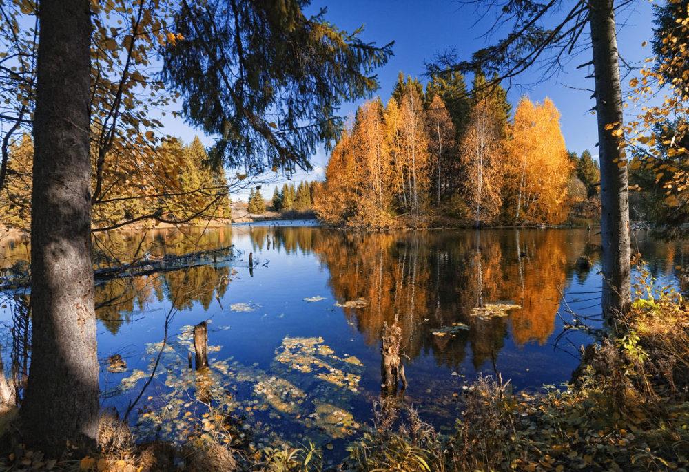 Середина осени на водоеме