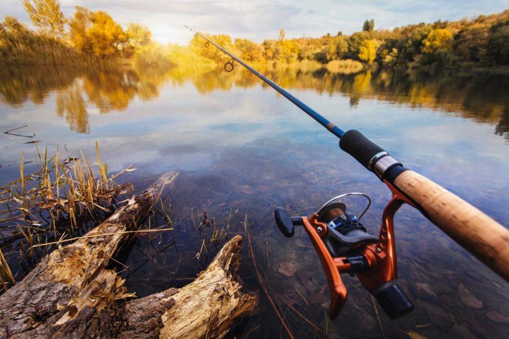 Выбор спиннинга для ловли осенней щуки