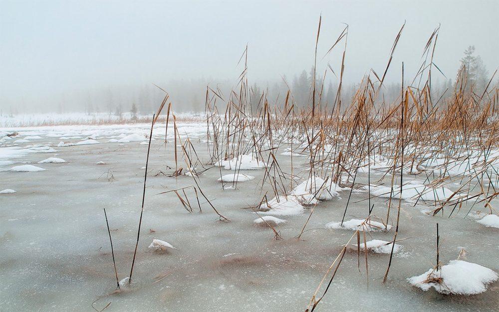 В феврале на озере