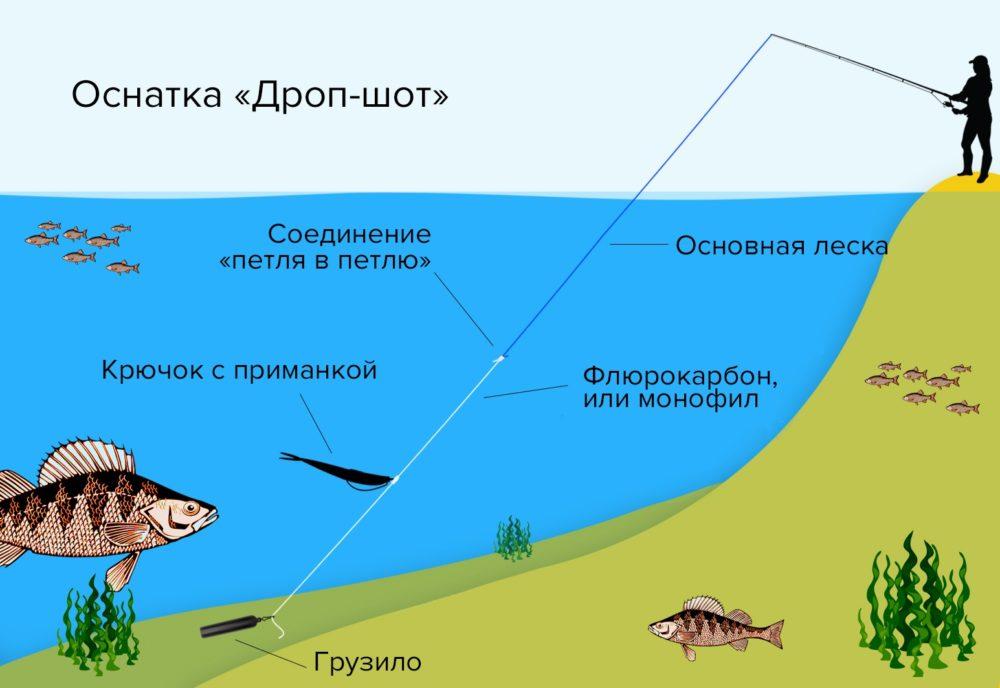 Оснастка дроп-шот для ловли на спиннинг